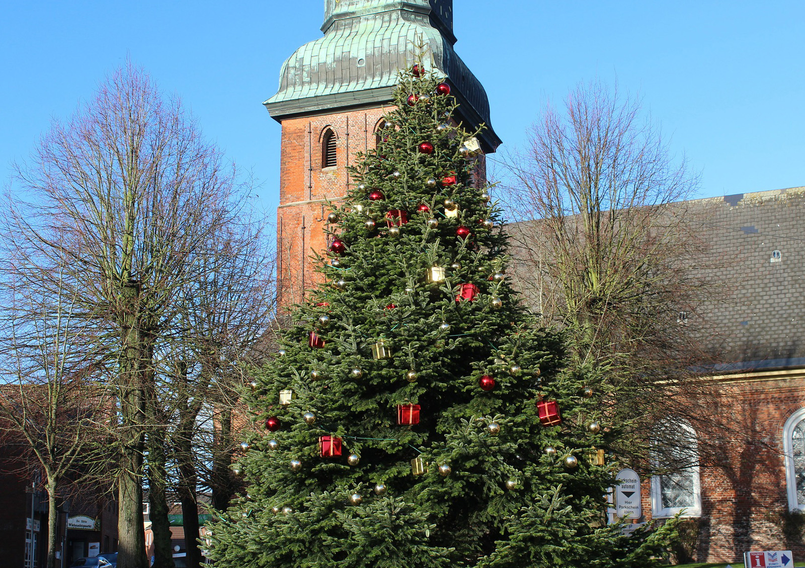 Christmas trees for schools and churches