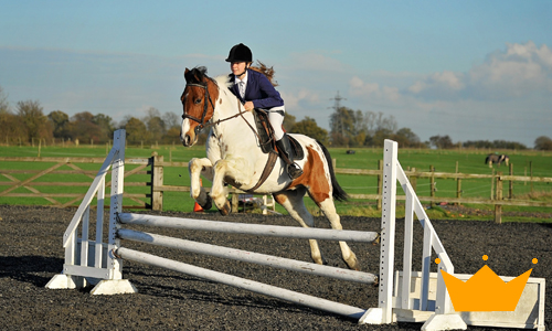 Harold's Park Equestrian